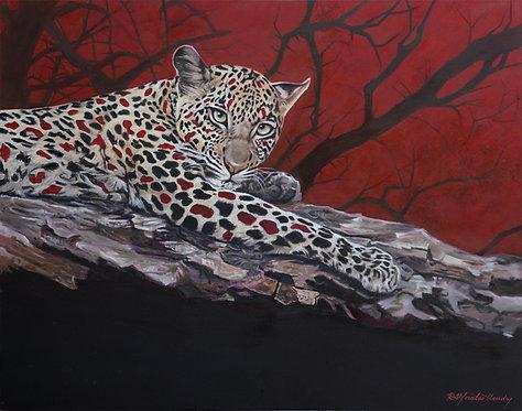 RedBlack Leopard