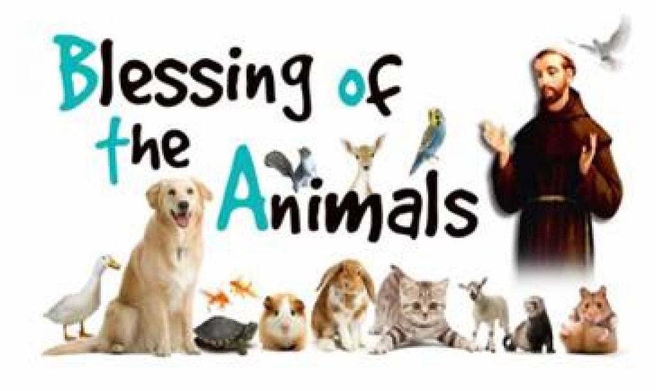 Blessing Animals.jpg
