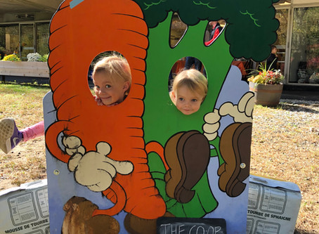 Fall Festival Fun!