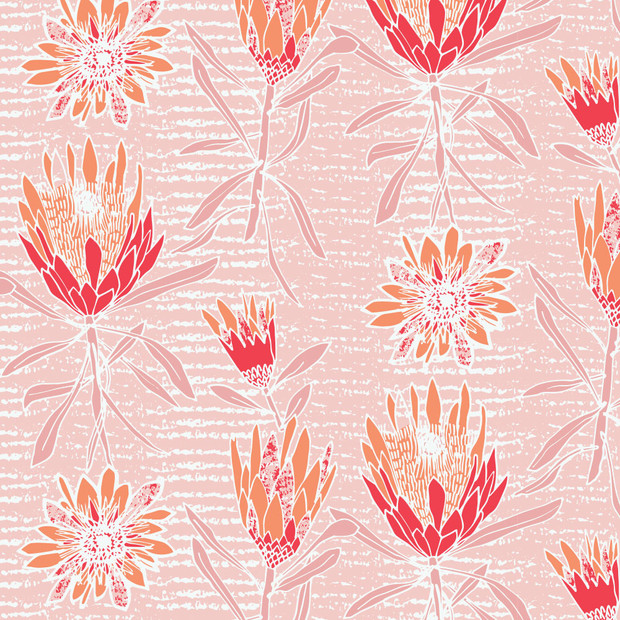 Protea Dance Blush