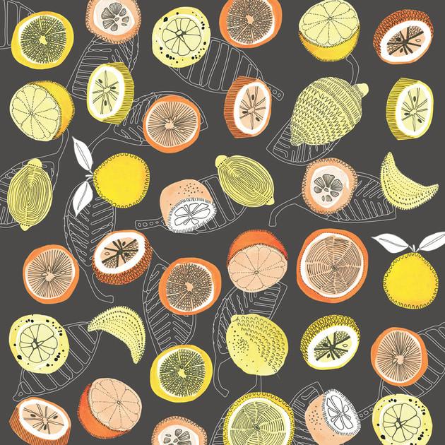 Citrus Grove Dark
