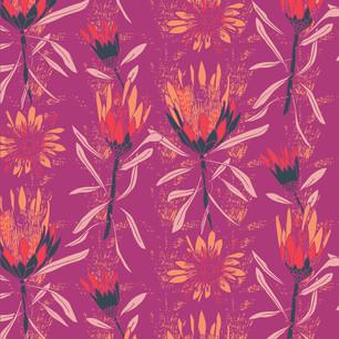 Protea Dance Magenta