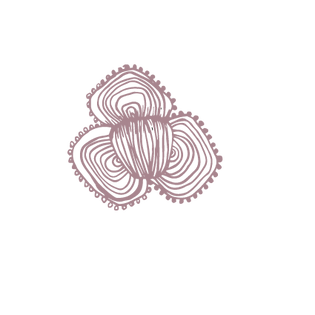 Motifs-for-website-png15.png