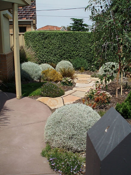 Castlemaine slate path leads through this drought tollerant garden. Designed and built on a shoestring budget.