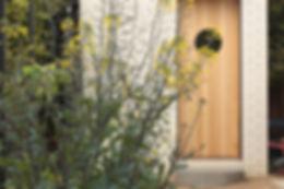 Kale in bloom, sustainable garden design in action