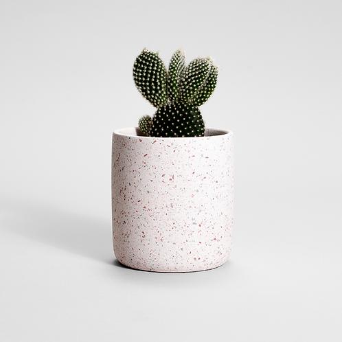FIORIERA rožinis grūdėtas vazonas