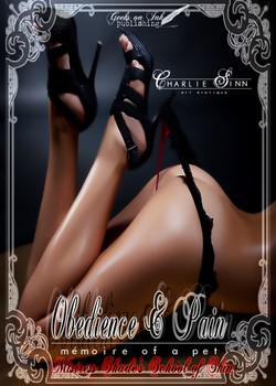 Mistress Shade's School of Skin