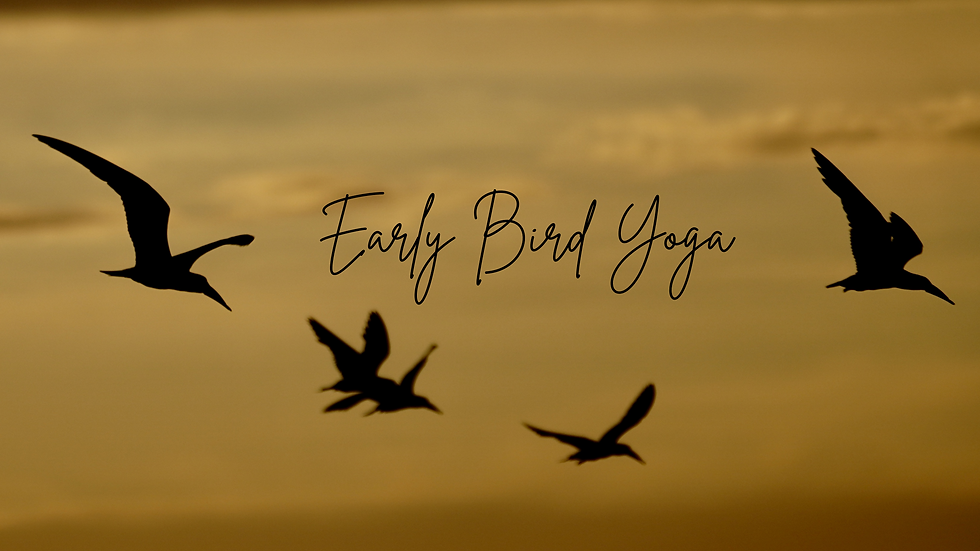 Banner Early Bird Yoga.png