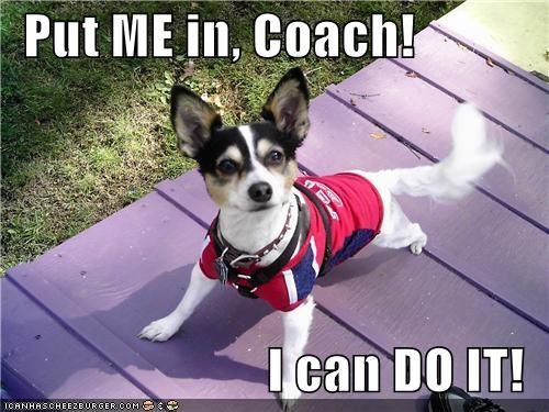 Put me in Coach...
