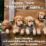 Puppy _New Beginnings_ Class.png