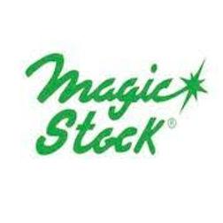 magic stock.jpg