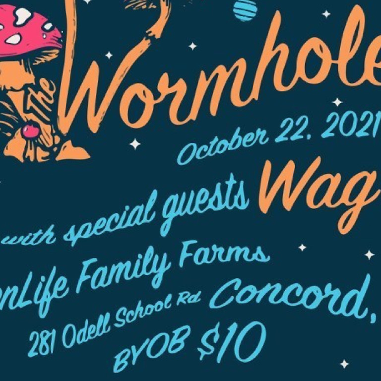 The Wormholes with special guests Wag