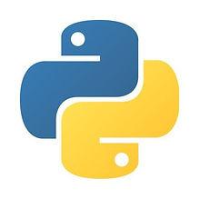 python.jpeg