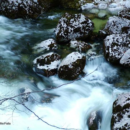 un long fleuve tranquille??