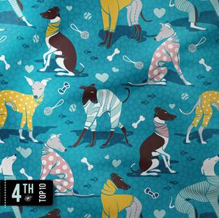 Greyhounds dogwalk