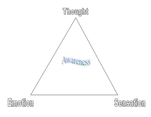 Triangle of awareness
