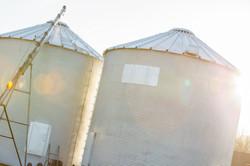Grain silos on our farm