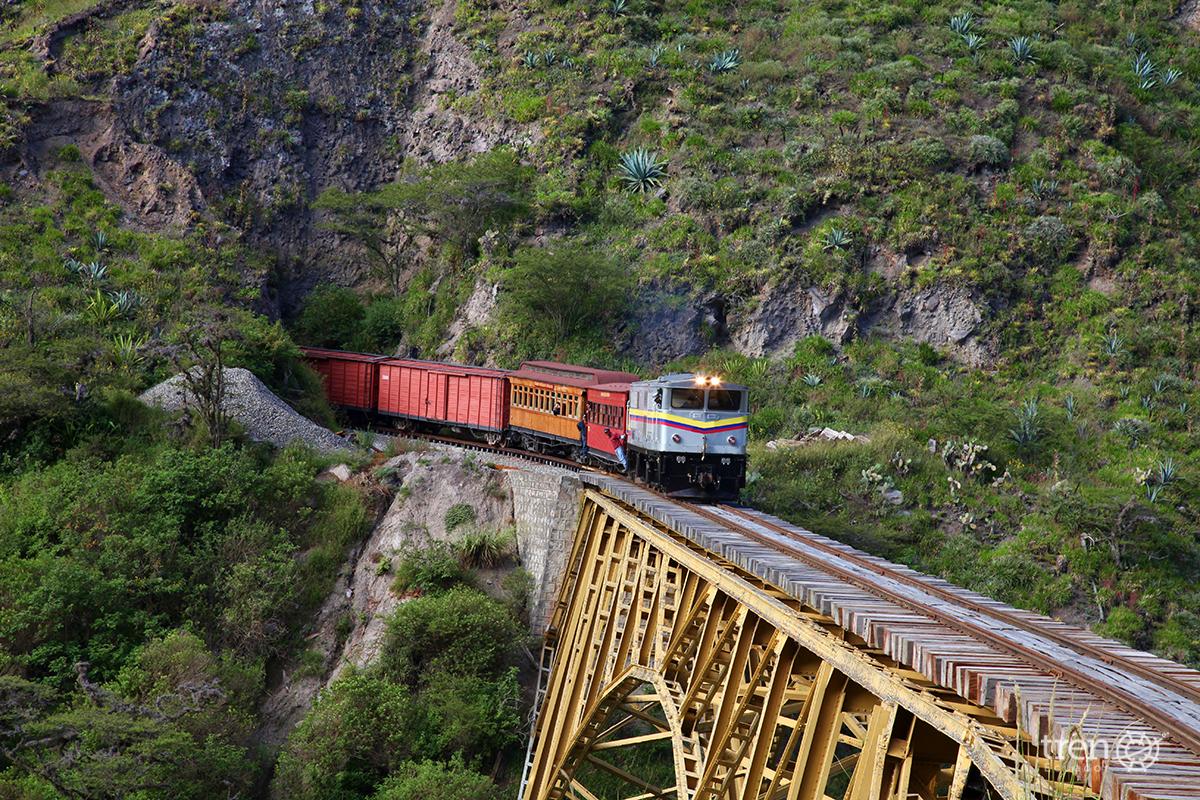 Tren de Salinas