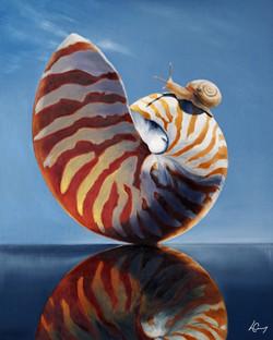 Raise A Little Shell - 🔴