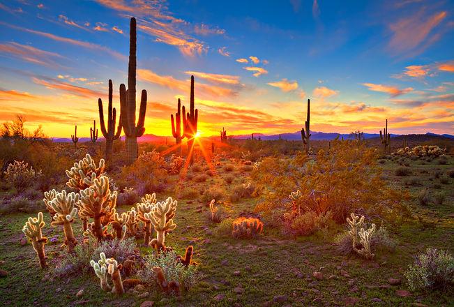 Phoenix sunset.jpg