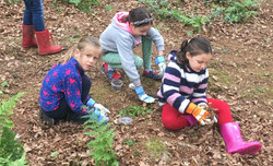 Conduct outdoor investigations!