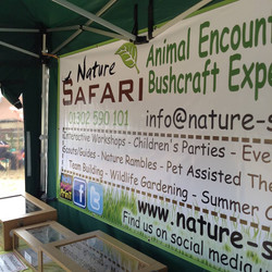 Welcome to Nature Safari!