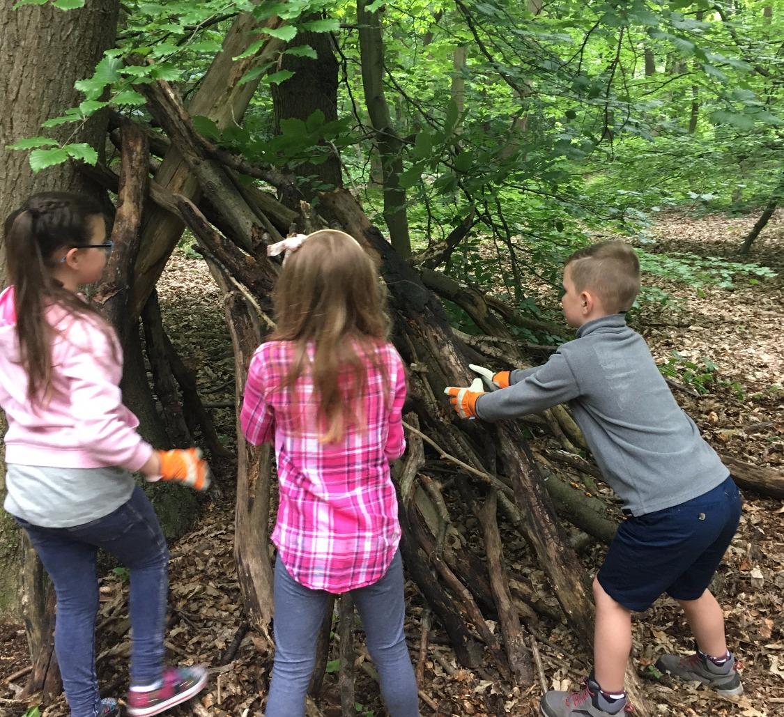 Build a natural den!