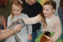 Meet a range of animals!