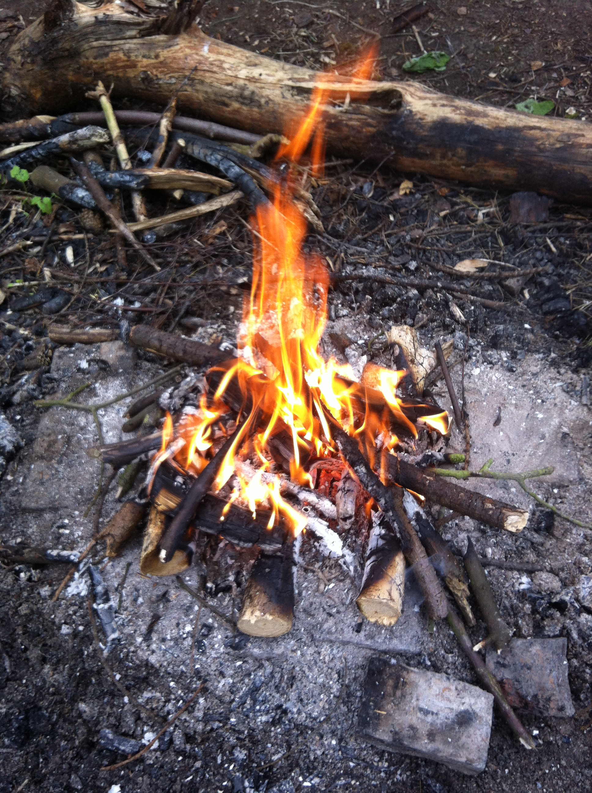 Build a Bushcraft Campfire!
