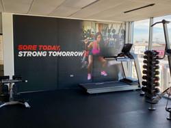 Gym Area #1