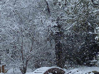 Snow in Georgetown?