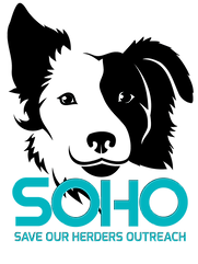SOHO LOGO SHORT ON GRAY (2).png