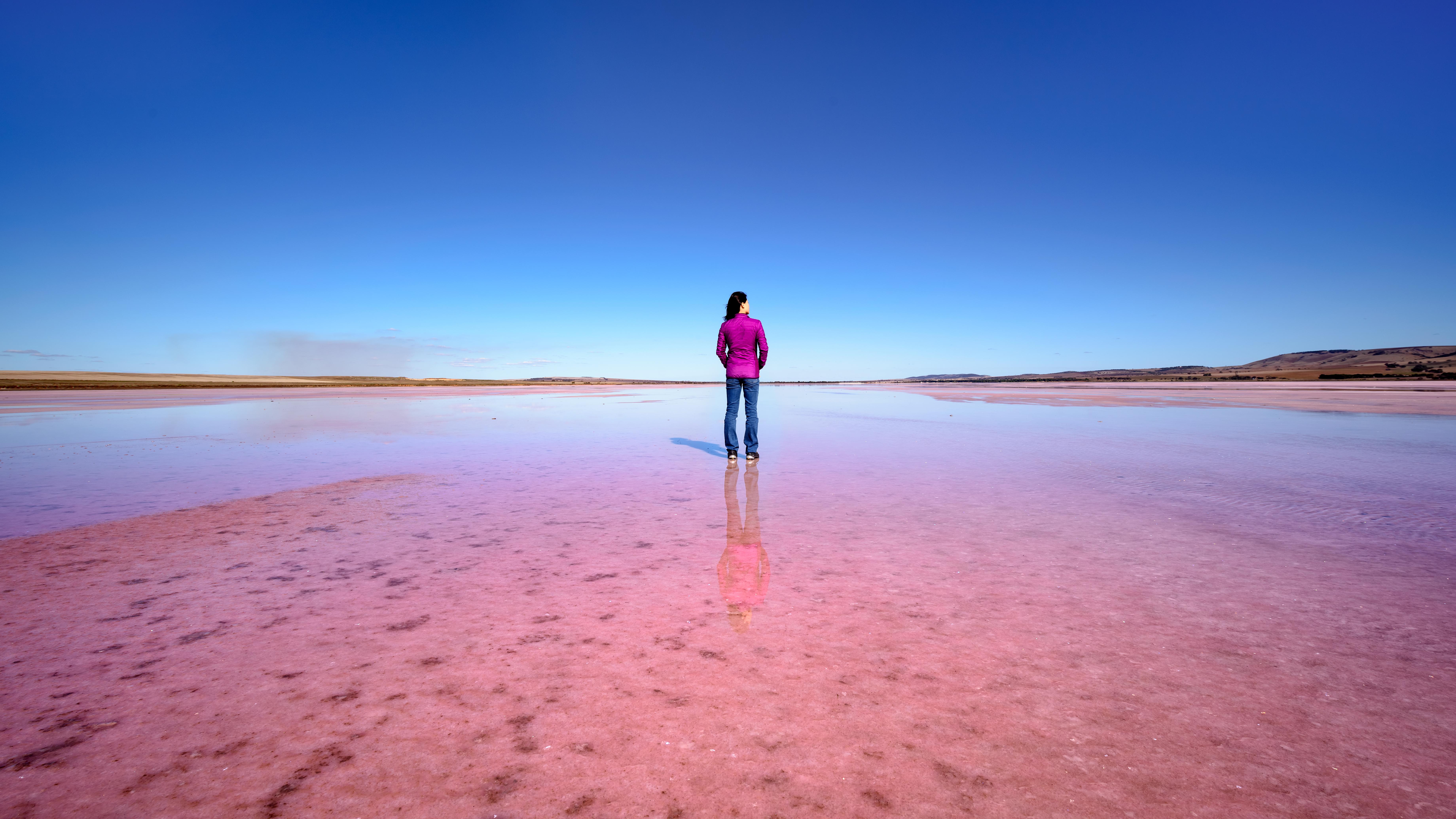 Pink Lake 盐湖