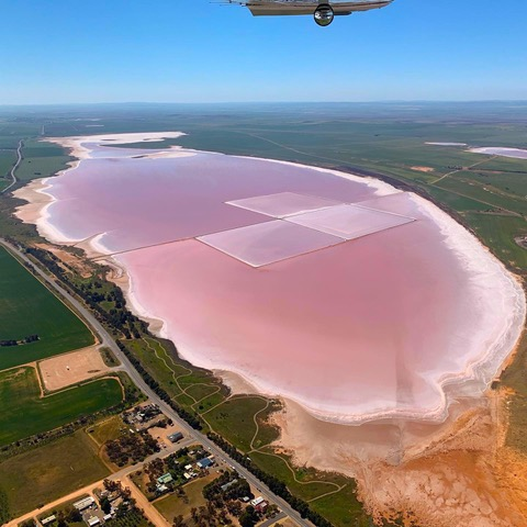 Pink Lake - Lake Bumbunga