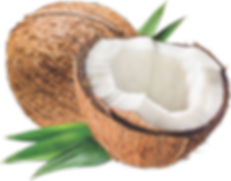 kisspng-coconut-oil-carrier-oil-coconut-