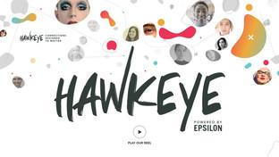 Hawkeye Website >