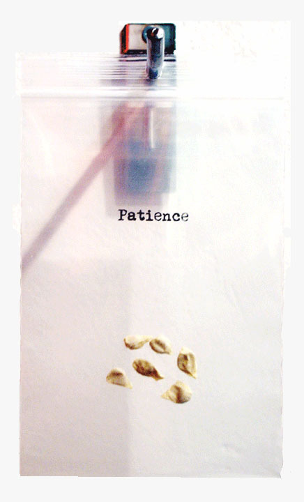 everyday-care: patience
