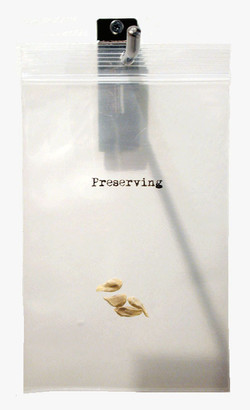 everyday-care: preserving