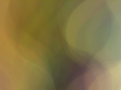 ICwJLP_Lili(ana)_2017_8930