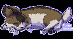 cat-bunny-4