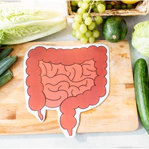 Why Gut health is the basis of all health
