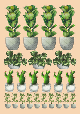 Houseplants for Growing Places Zine