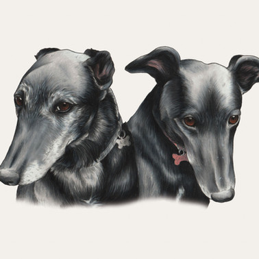 Ace & Candy - Coloured pencil and fineliner