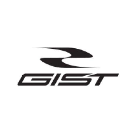 GIST-LOGO.jpg