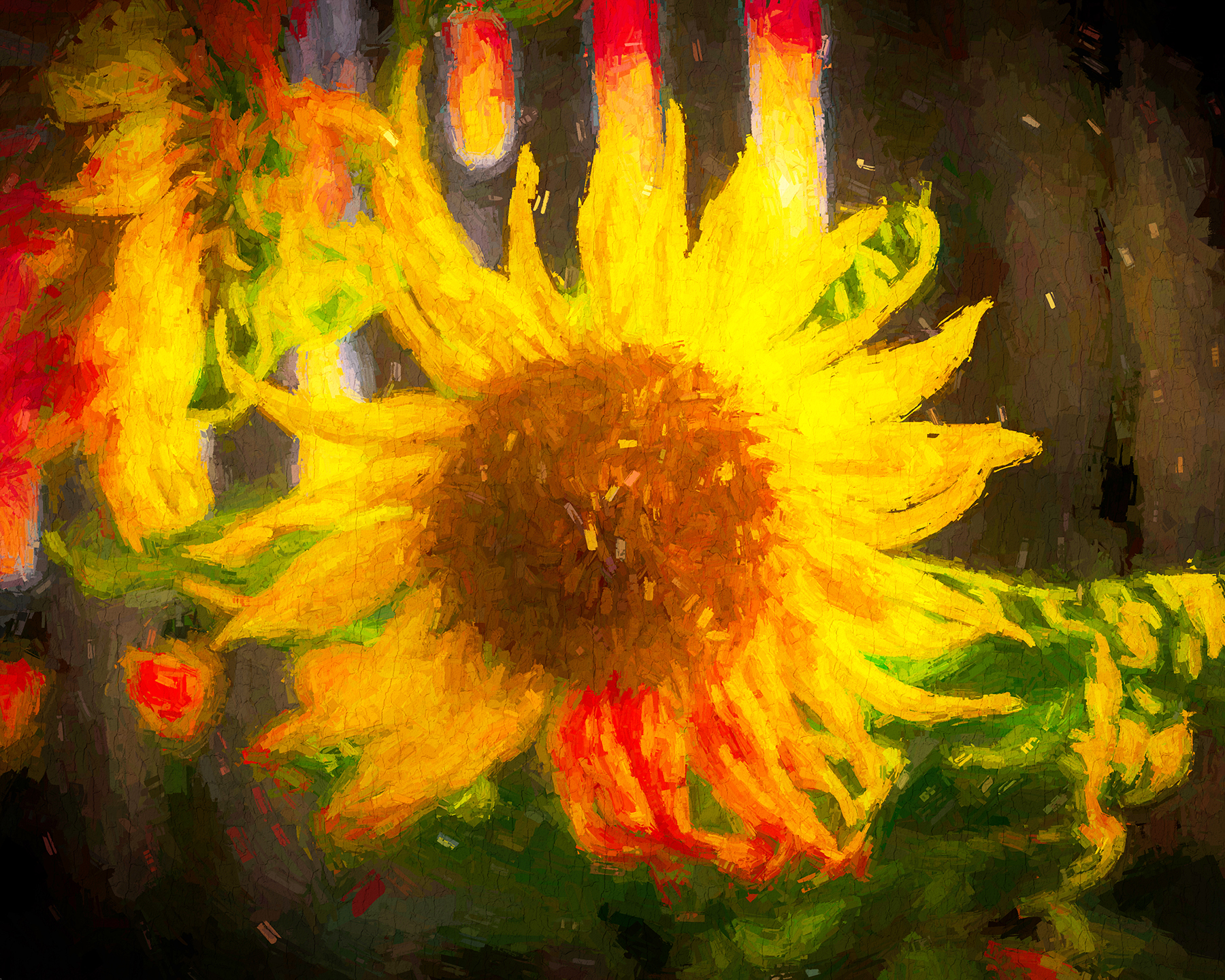 Sun in My Garden 2