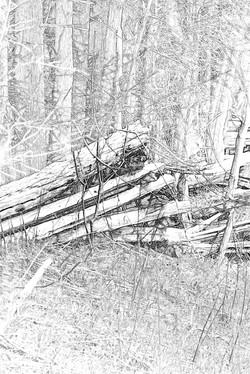 Split Rail Fence 3