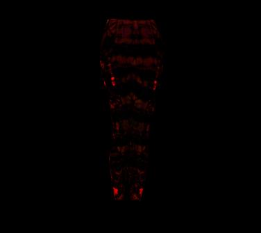 Glowing Red Leggings