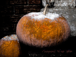 Memories of Autumn on Frosted Pumpkin