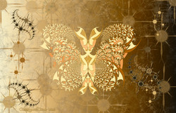 From Boxes to Fractals Butterfly