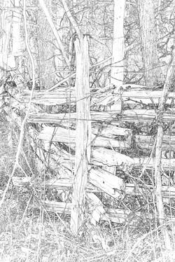 Split Rail Fence 1